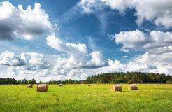 Heuballen mit blauem Himmel und flaumigen Wolken Lizenzfreies Stockfoto