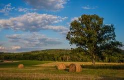 Heuballen stehen auf einem schönen Landbauernhof still Stockbilder