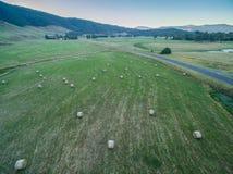 Heuballen zerstreut auf grünes Feld Lizenzfreie Stockfotos