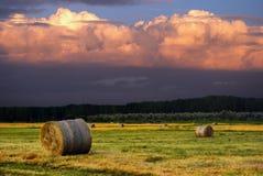 Heuballenbauernhof/Heuballen auf dem Feld nach Ernte, Ungarn Lizenzfreies Stockfoto