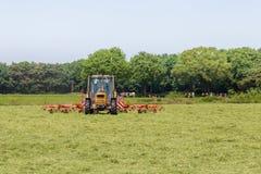 Heuen Sie das Truning zum trockenen Gras in der Sonne auf dem Feld im Netherla Lizenzfreie Stockfotografie