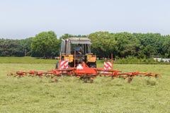 Heuen Sie das Truning zum trockenen Gras in der Sonne auf dem Feld im Netherla Stockfotografie