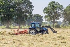 Heuen Sie das Wenden an trockenes Gras in der Sonne auf dem Feld im Netherla Stockfotos