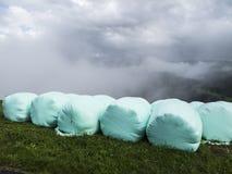 Heuen Sie Kautionen im regnerischen Wetter, das durch landwirtschaftlichen Plastik geschützt wird Lizenzfreie Stockfotos
