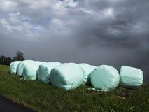 Heuen Sie Kautionen im regnerischen Wetter, das durch landwirtschaftlichen Plastik geschützt wird Stockbilder