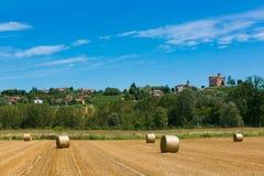 Heuernte auf den italienischen Gebieten Stockfoto