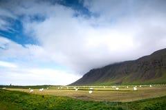 Heufelder in Island Lizenzfreies Stockfoto