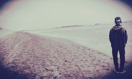 Heulang del sayang di Pantai Fotografia Stock Libera da Diritti