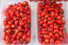 heupen Verse organische rode rozebottels in plastic kom royalty-vrije stock foto's
