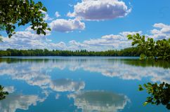 Heure d'été dans un lac dans la forêt Images stock