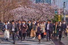 Heure de pointe à Osaka au printemps photographie stock libre de droits