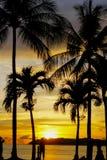 Heure magique de plage tropicale à la station de vacances et à la station thermale du ` s Tanjung Aru de La de Shangri Images libres de droits