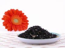 Heure pour le thé Photographie stock libre de droits