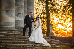 Heureux magnifique élégant romantique doux complètement des couples d'amour Image stock