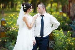 Heureux magnifique élégant romantique doux complètement des couples d'amour Photos stock
