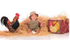 Heureux parmi les poulets Image libre de droits