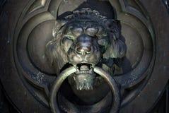Heurtoir de trappe de lion photo libre de droits