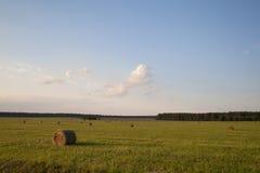 Heuschober auf dem Feld Stockbild