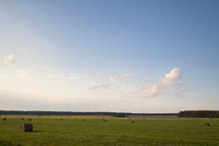 Heuschober auf dem Feld Stockfotos