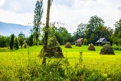 Heuschober auf dem Feld und den Holzhäusern Stockfotografie