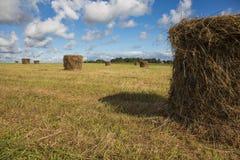 Heuschober auf dem Feld unter blauen Himmeln Lizenzfreie Stockfotos