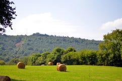Heuschober auf Hochlandwiese in den französischen alpes lizenzfreie stockfotos