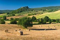 Heuschober und Bäume in der sonnigen toskanischen Landschaft, Italien stockfotografie