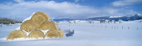 Heuschober und Schnee Stockfoto