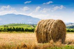 Heuschober und Zypressen in Toskana, Italien stockbilder