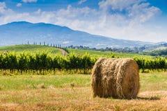 Heuschober und Zypressen in Toskana, Italien stockfoto