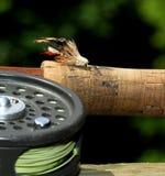 Heuschrecken-Fischen-Fliege Lizenzfreie Stockbilder