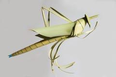 Heuschrecken machten †‹â€ ‹von den Kokosnussblättern Stockbilder