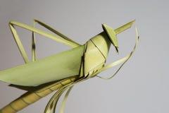 Heuschrecken machten †‹â€ ‹von den Kokosnussblättern Lizenzfreie Stockfotografie
