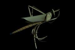 Heuschrecken machten †‹â€ ‹von den Kokosnussblättern Stockfotografie