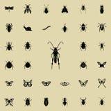 Heuschreckenikone Insektenikonen-Universalsatz für Netz und Mobile vektor abbildung