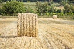 Heustapel auf einem geernteten Feld Stockfotos