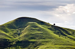 Heuvel stock afbeelding