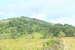 Heuvel royalty-vrije stock afbeelding