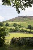 Heuvel achter Ashness-Brug; Keswick; Meerdistrict Royalty-vrije Stock Foto's