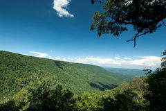 Heuvel Altijdgroen Bos, het Nationale Park van Khao Yai, Thailand Stock Foto
