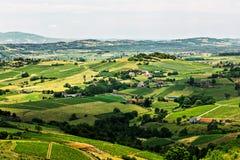 Heuvel in Beaujolais, Frankrijk Royalty-vrije Stock Afbeelding