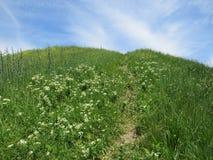 Heuvel in de lenteweide stock fotografie
