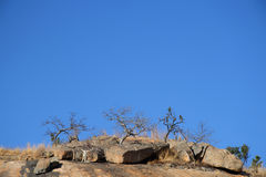 Heuvel en blauwe hemel Royalty-vrije Stock Foto's