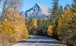 Heuvel Krivan, Slowakije royalty-vrije stock foto