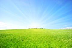 Heuvel met groen gras en blauwe hemel Stock Foto