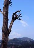 Heuvel met hemellandschap Royalty-vrije Stock Afbeelding