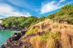 Heuvel met rotsen, gras en bomen Royalty-vrije Stock Foto