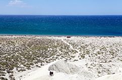 Heuvel na Punta Loma dichtbij Puerto Madryn, een stad in Chubut-Provincie, Patagonië, Argentinië stock foto's