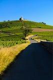 Heuvel van Fleurie-dorp, Beaujolais, Frankrijk Stock Afbeeldingen