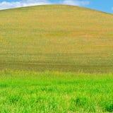 Heuvel van Sicilië stock foto's